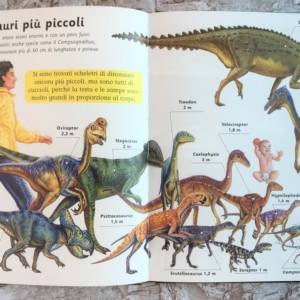 Enciclopedia dei dinosauri libro bimbo