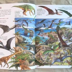 Grande libro dei dinosauri libro bambino