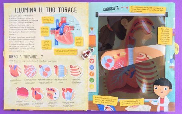 Il corpo umano libri torcia libro bambina