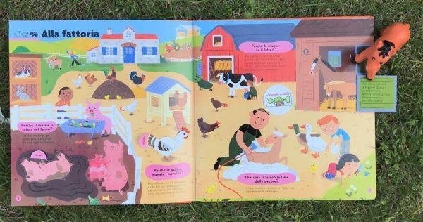 Il libro pop up degli animali libro bambino