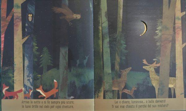 Luna libro bambino