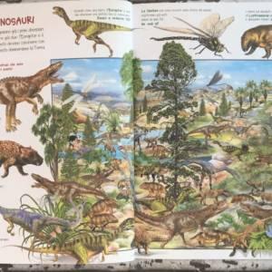 Mio primo libro dei dinosauri libro bimbi