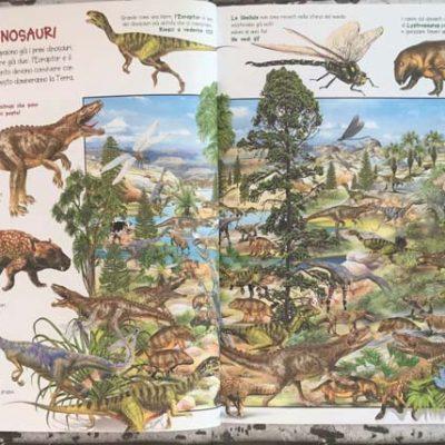 Mio primo libro dei dinosauri - Ed. Grillo parlante