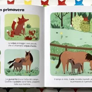 Le stagioni enciclopedia dei piccoli libro bimbi
