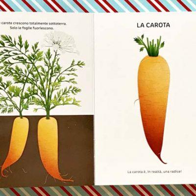 La verdura. Ediz. a colori - Clara Corman