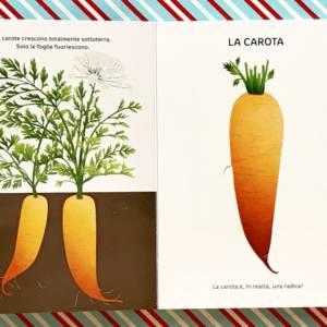 la verdura libro bambini