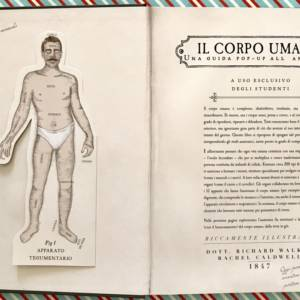 Corpo umano pop up libro bambini