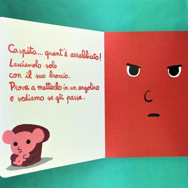 Il libro arrabbiato. Ediz. Ippocampo