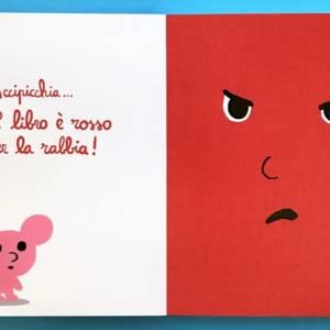 il libro arrabbiato libro bambini