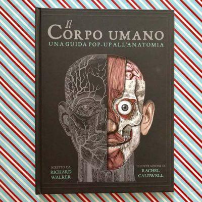 il corpo umano una guida pop-up all'anatomia. Libro per bambini