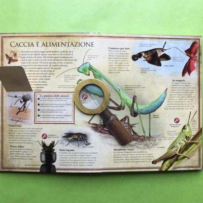 Naturalia - Insetti - Un mondo straordinario rivelato nei dettagli