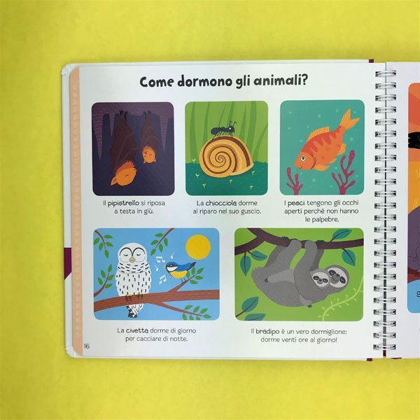 Come enciclopedia bambini libri per bambini domande risposte