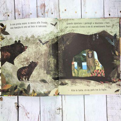 Casa Britta Teckentrup Sassi Junior libri per bambini libri casa bimbi
